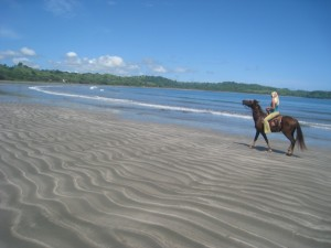 Or ride a horse on the beach!