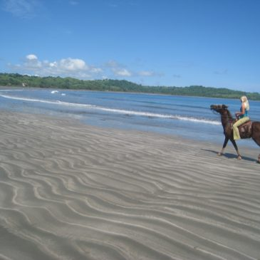 Top 10 Things To Do In Pedasi, Panama